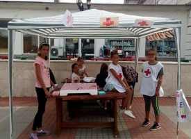 Младите от Стрелча оцветиха града