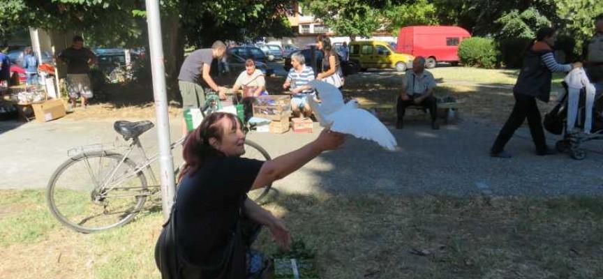Пазарджик: Чудотворната икона на Богородица брани града и помага на бездетни жени