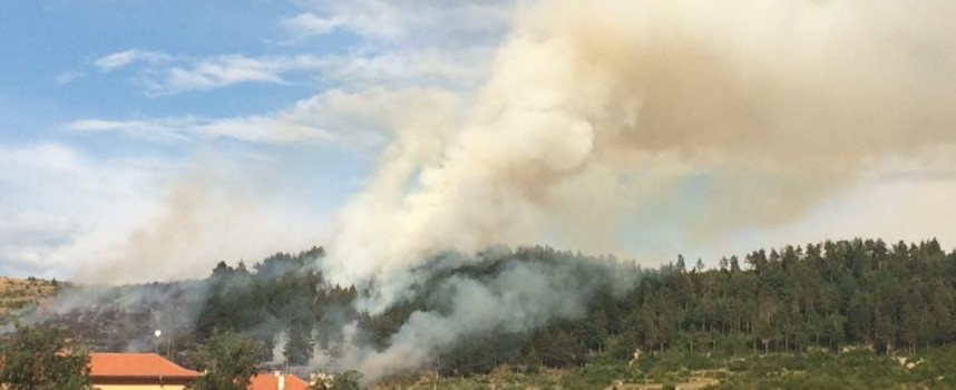 2 дка борова гора изгоря край Брацигово