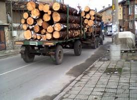Спипаха двама с крадени дърва в Семчиново