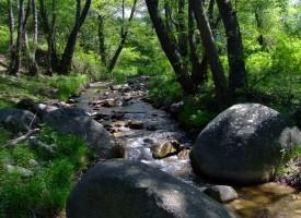 РИОСВ: Реките в областта са чисти, няма сметища в коритата