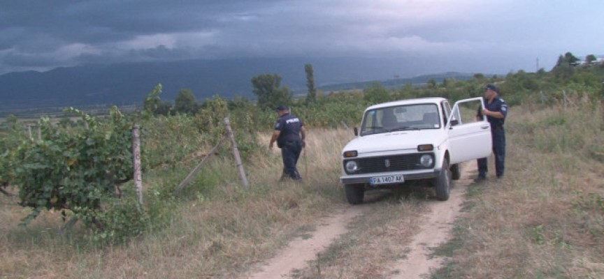 Край Ветрен: Полиция пази лозята от апаши