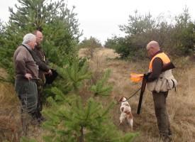 В Стрелча: Авджиите нахраниха дивеча с 3 тона моркови и 500 кг царевица