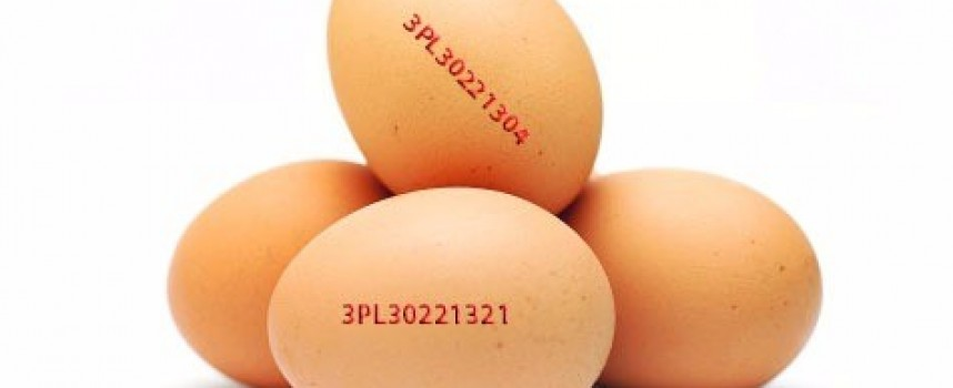 Полски яйца заразени със салмонела издирват от Агенцията по храните