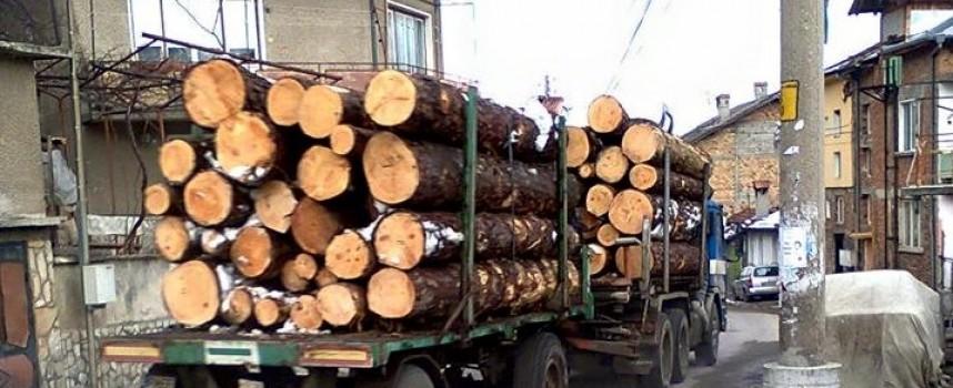 Задържаха камион с незаконни дърва край Сърница