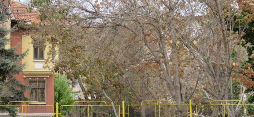 """Читателска връзка: Служителките на """"Брокс"""" си хвърлят боклука в двора на """"Дома на учителя"""""""