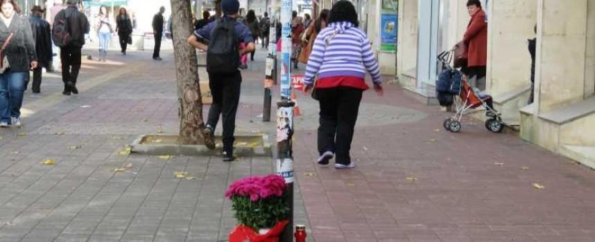Градски истории: Цветя на Мехкемето