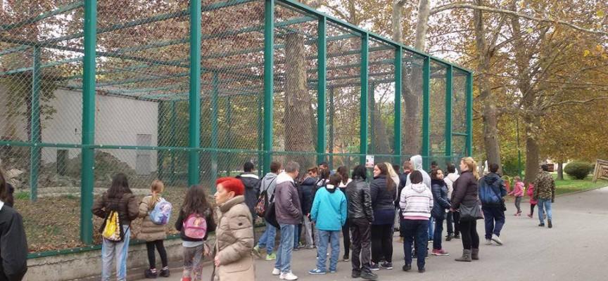 36 деца от социални домове в Бургас отдъхваха за седмица във Велинград