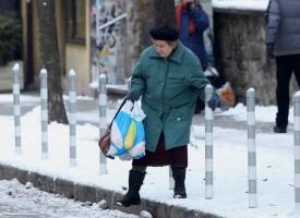 Над 20 сигнала за паднали дървета и клони подадени от граждани до Община Пазарджик, почистват се незабавно