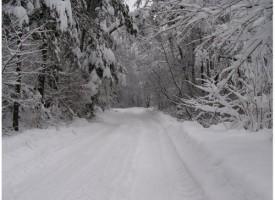 Снегонавявания и силен вятър затапиха пътя Радилово – Капитан Димитриево