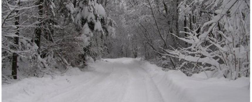 Заради снега и студа: Намалиха учебните часове в община Лесичово