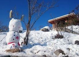 Снежен човек с копчета от лимонада и бъклица в ръка посреща в Сбор