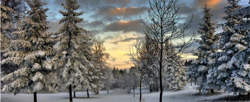 """Община Лесичово обяви фотоконкурс """"Зимата е сезон, а не бедствие"""""""