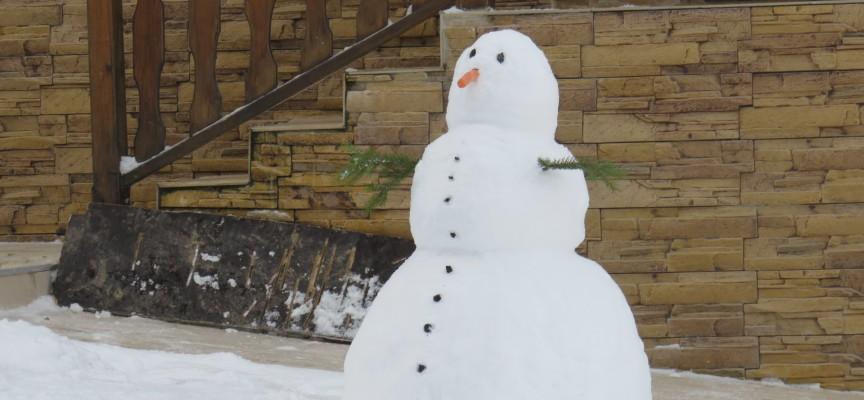 От вторник: Снегът се завръща временно, минусови температури