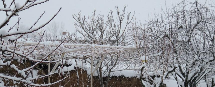 ОД МВР – Пазарджик: Не пътувайте, ако не е спешно, в снежна блокада сме