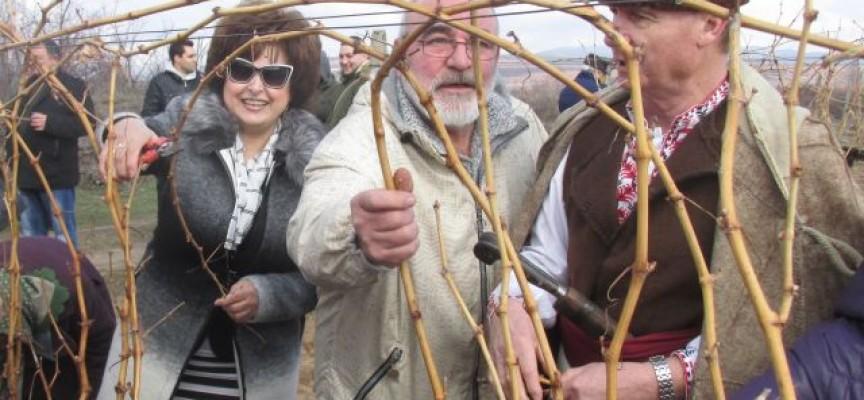 Гинче Караминова поздрави лозари и винари във Виноградец