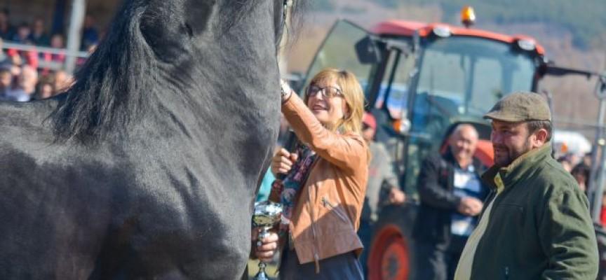 Ето кой грабна наградите на традиционните конни надбягвания за Тодоровден в с. Калугерово