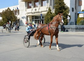 Шествие за Тодоровден се проведе в Пазарджик