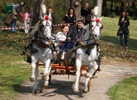 Пазарджик: 2 418 семейства празнуват именик в къщата