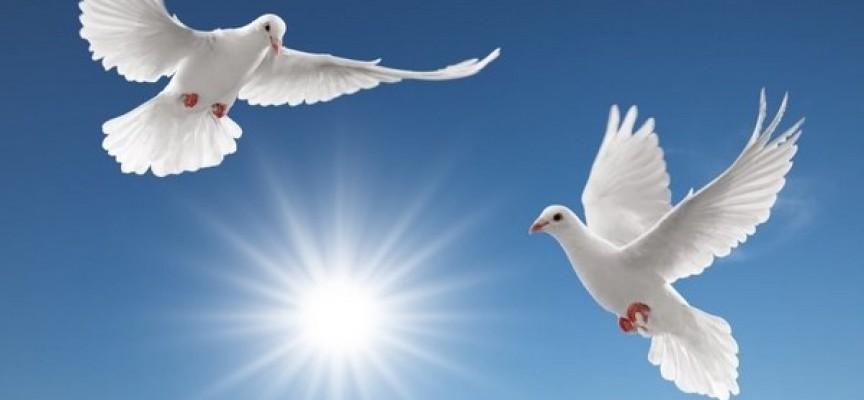 Днес да почерпят всички с имената – Благо, Блага, Благовест, Благовеста, Благой