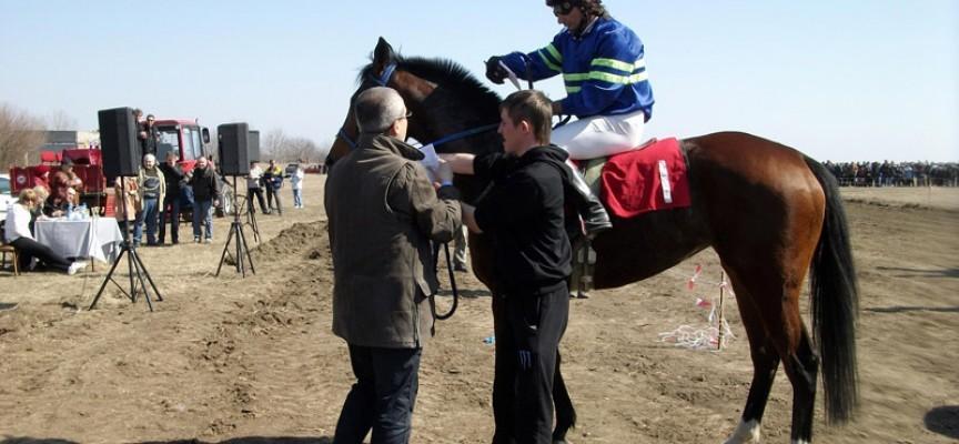 В Стрелча: Конни състезания в Спортния комплекс