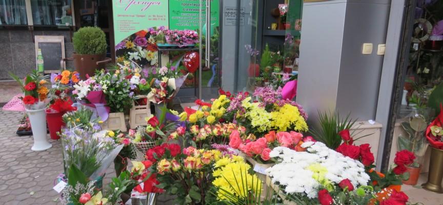 На 8 март: Пазарджик стана море от цветя, заделяме за тях по тридесет лева днес