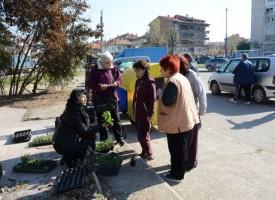 """Кампанията """"По-чист, по-зелен и цветен Пазарджик – 2018"""" ще стигне и до селата"""