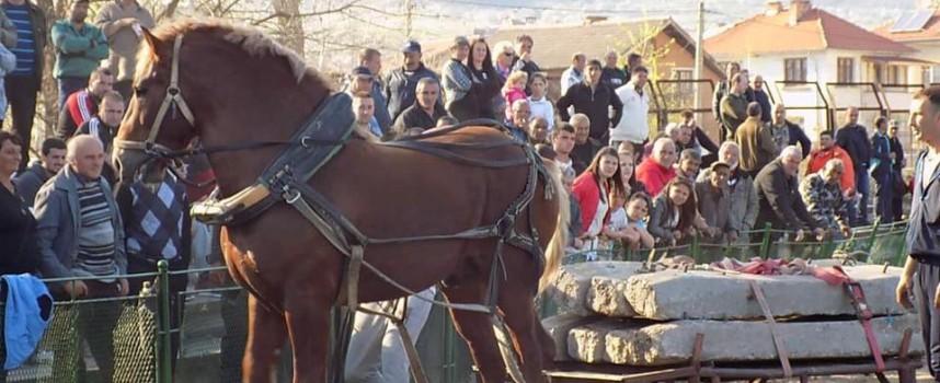 Стрелча с конни състезания в последния ден на март