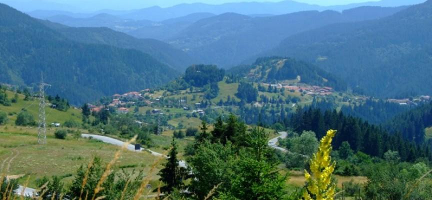 РИОСВ засилва контрола за опазване на резерватите от пожари