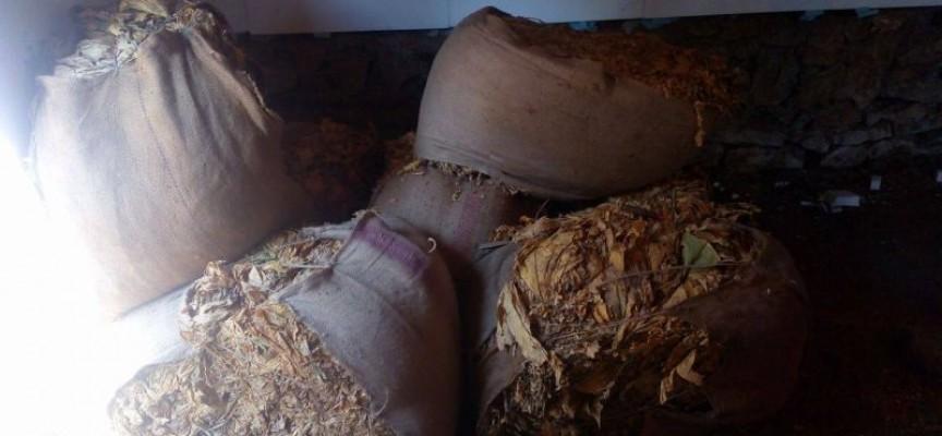 Цигари и тютюн без бандерол откриха в Пещера, Панагюрище и Велинград