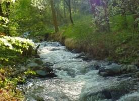 Спад в замърсяванията на речните корита отчитат от РИОСВ