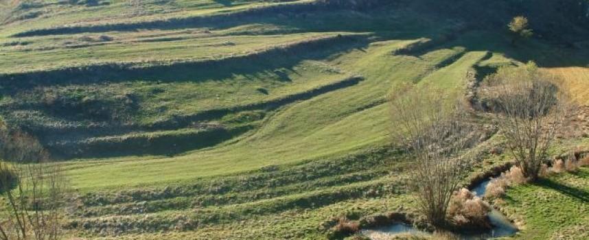 Има ли опасност резерват Купена да отпадне от списъка на ЮНЕСКО?