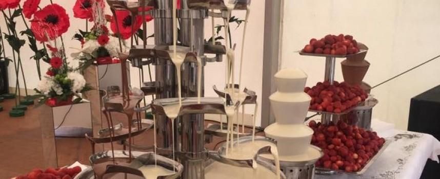Андреа Ригони откри нова база в Пазарджик, а след това празника на екоягодата