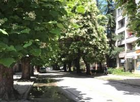 """Общината подаде ръка на гражданите, обсъждаме проект """"Стамболийски"""" на 10 юли"""