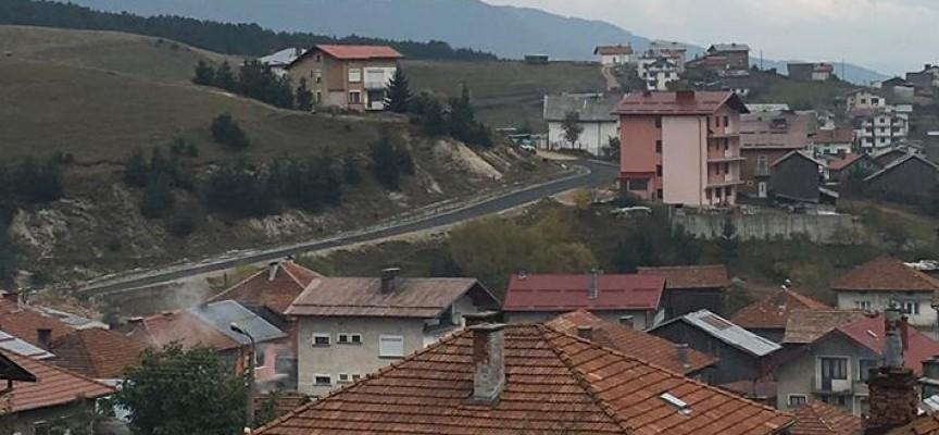 Горски инспектори задържаха камион с крадени трупи край Сърница