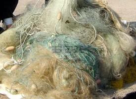 Пазарджик: Пловдивчанин спипан да продава бракониерска мрежа на битака
