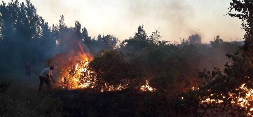 20 декара черешова градина изгоря в Ивайло, лятна кухня в Сбор