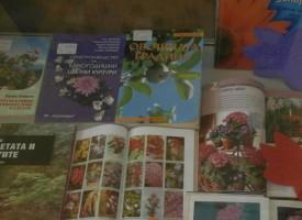 Библиотеката: Книги за градината в отделна витрина