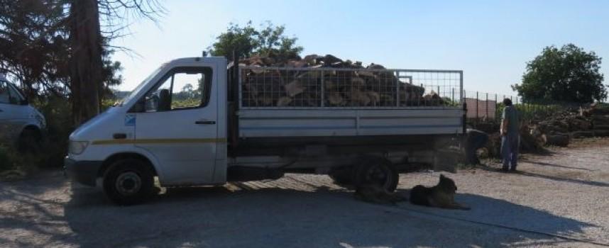Задържаха незаконна дървесина в Белово