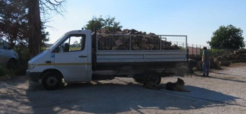 Три бързи производства за бракониери в Драгиново, Брацигово и Велинград