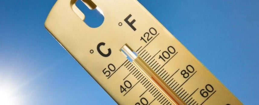 РЗИ съветва: Как да се предпазим от жегата?