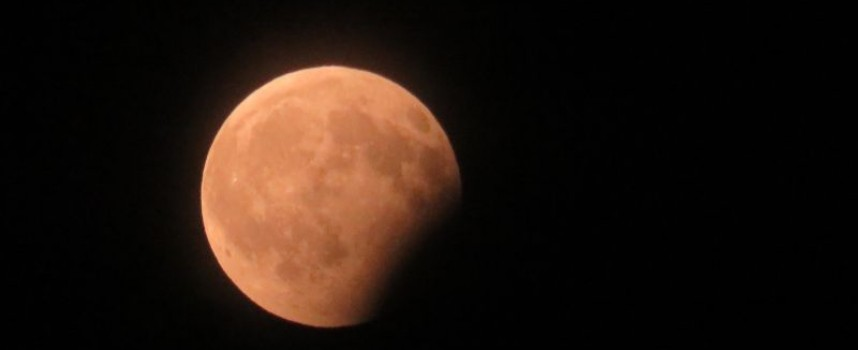 "УТРЕ: Вдигни очи и се наслади на ""Розова Луна"""