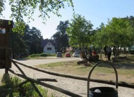 Градушка удари Атолука, боровините са обрулени