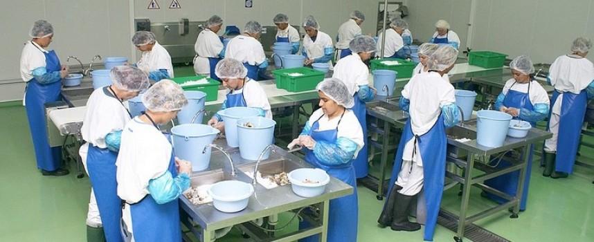 Панагюрище и Пазарджик с нови предприятия за преработка на риба