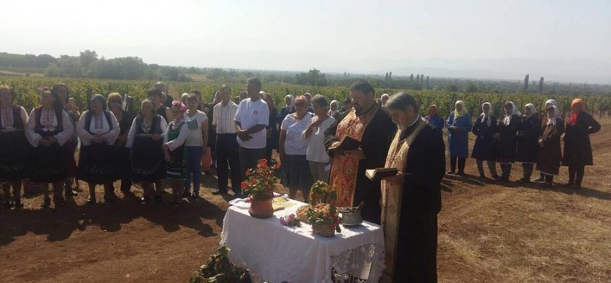 Даниела Малешкова придружи министър Порожанов на откриване на гроздобера