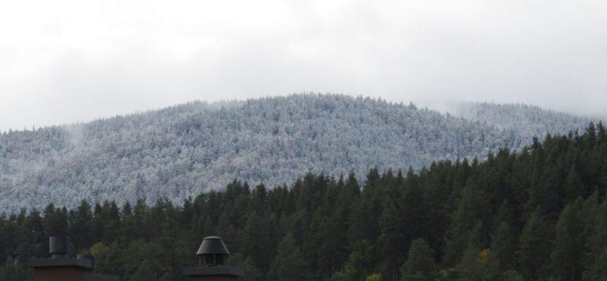 Снегът напомни за зимата, поваля в Равногор и Атолука