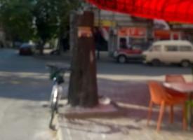 """Знак Stop мистериозно изчезна от ул. """"Дойран"""", дървото до него е отрязано"""