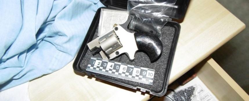 Полицията прибра двама нови иманяри, вижте какво намериха в дома им