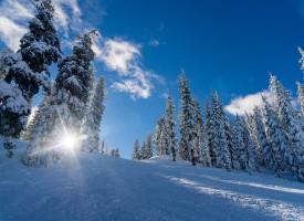 УТРЕ: Пролетни температури превземат областта