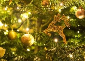 """ДГ """"Калина Малина"""" организира Коледен благотворителен базар"""